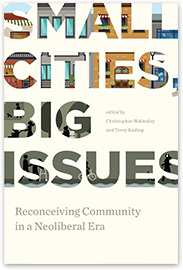 [book cover] Small Cities, Big Issues